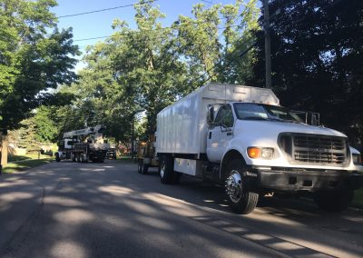 Tree removal prep in West Michigan